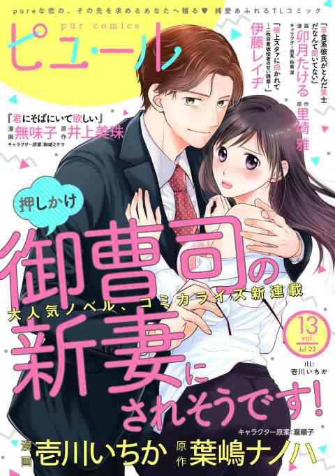 ピュールコミックス 13巻